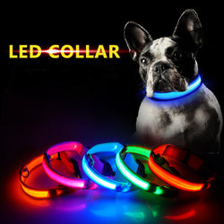 LED Dog and Cat Collar With USB Charging