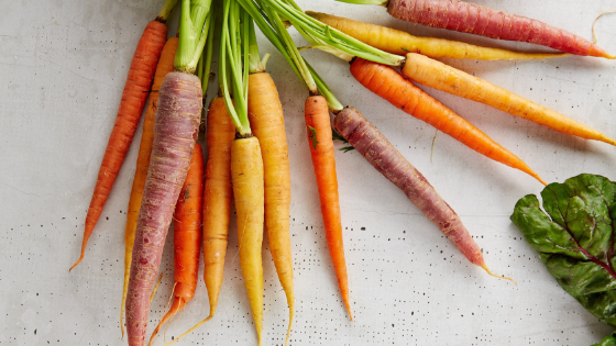 How ginseng and carrot peptides boost collagen production