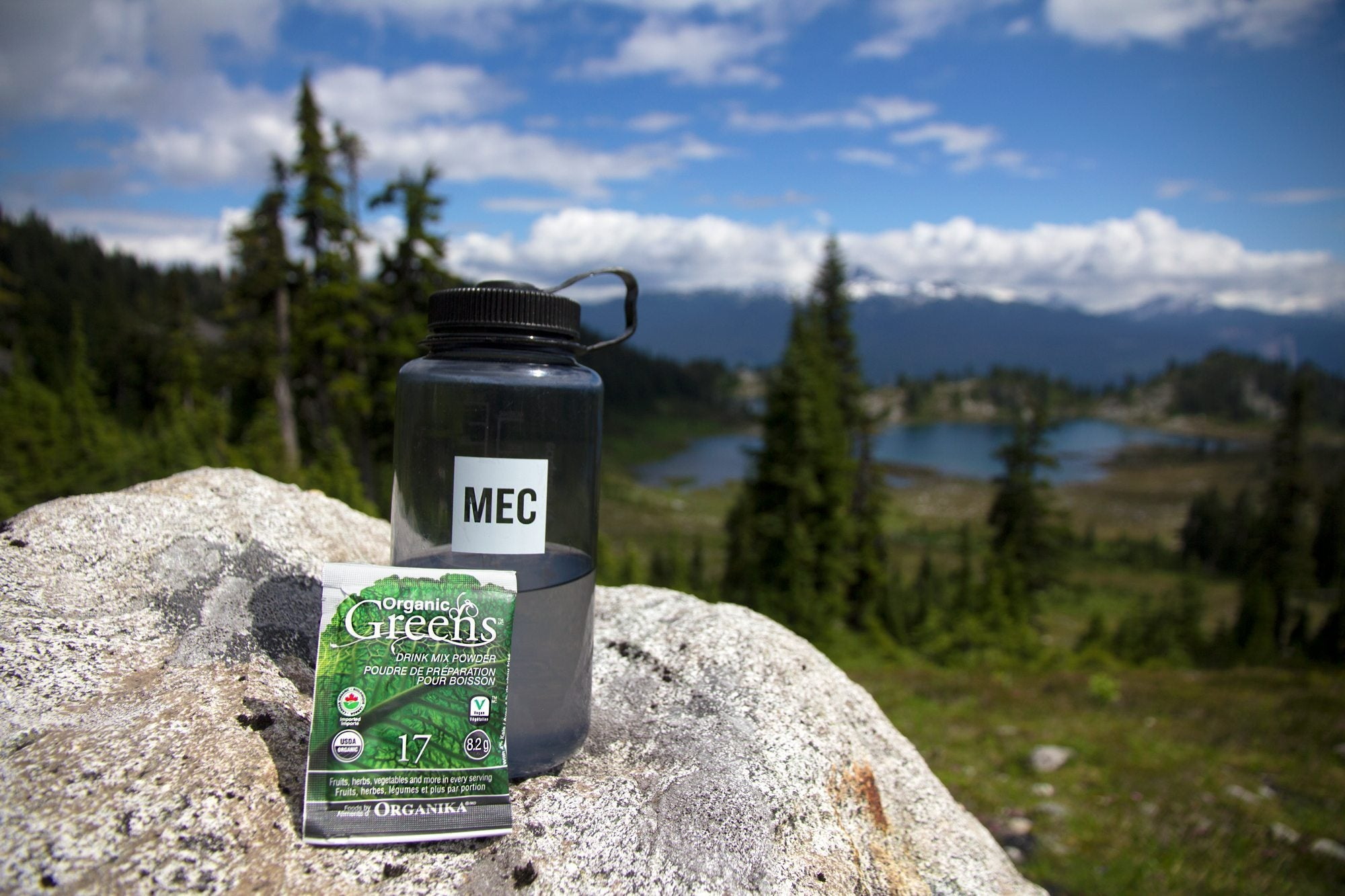 greens on the go is a great healthy road trip snack