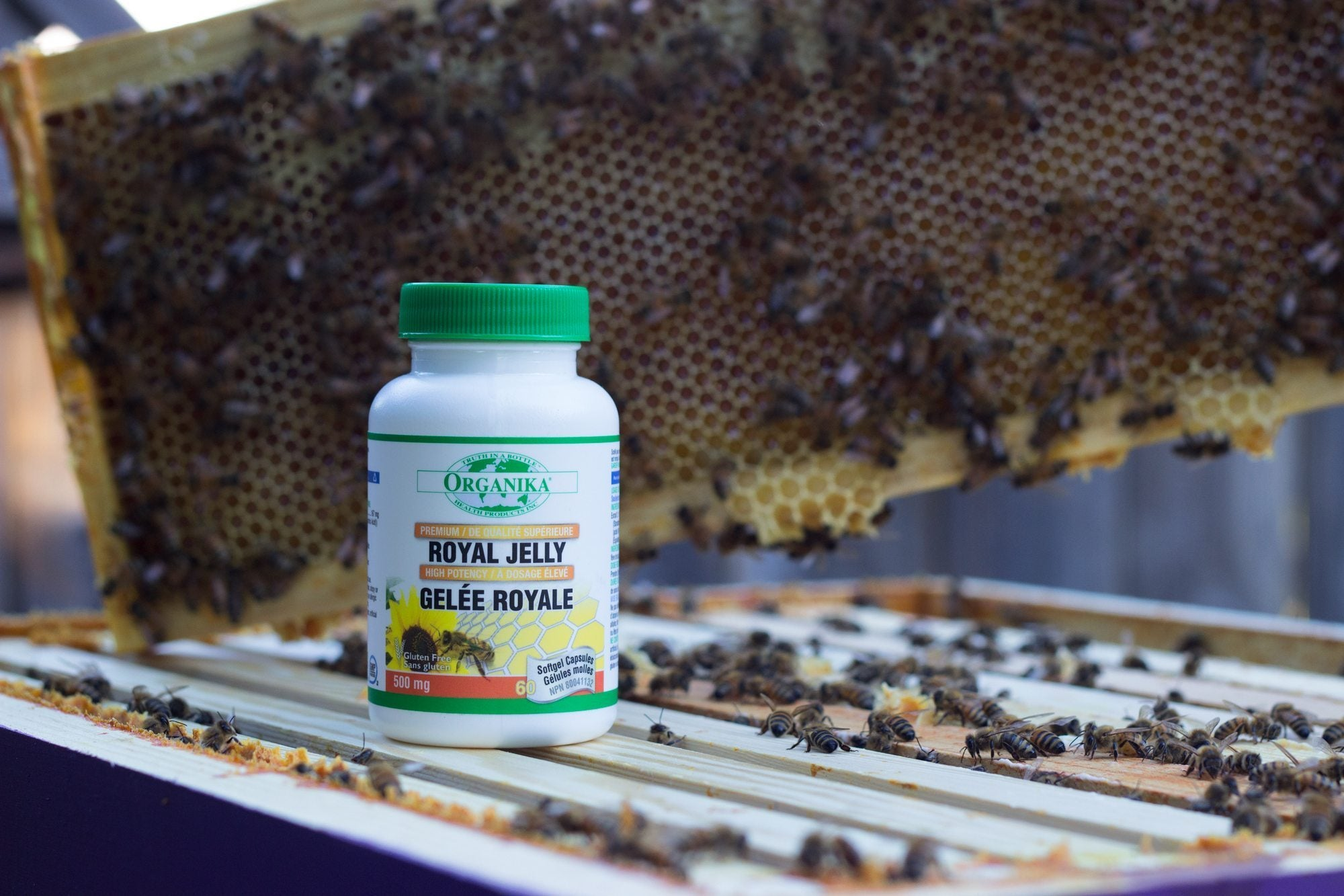 royal jelly | bee products health benefits