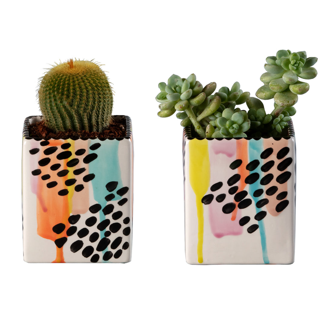 Drippy Square Planters Activity (2 planters)