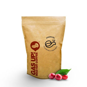 Café de Veracruz, Grano Caracol - GAS UP! MASTER COFFEE