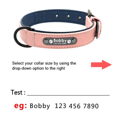 Pet Dog Tag Collar