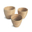 Cane Rattan Round Tapered Baskets Set of 3