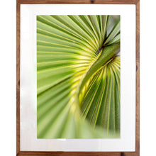 "Load image into Gallery viewer, Charleston Palm | 28"" x 20"""