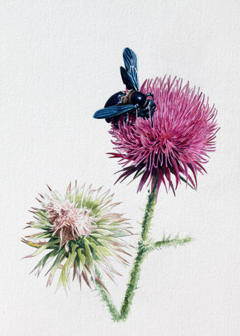 THISTLE - ORIGINAL PAINTING