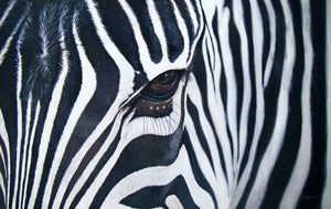 ZEBRA - ORIGINAL PAINTING