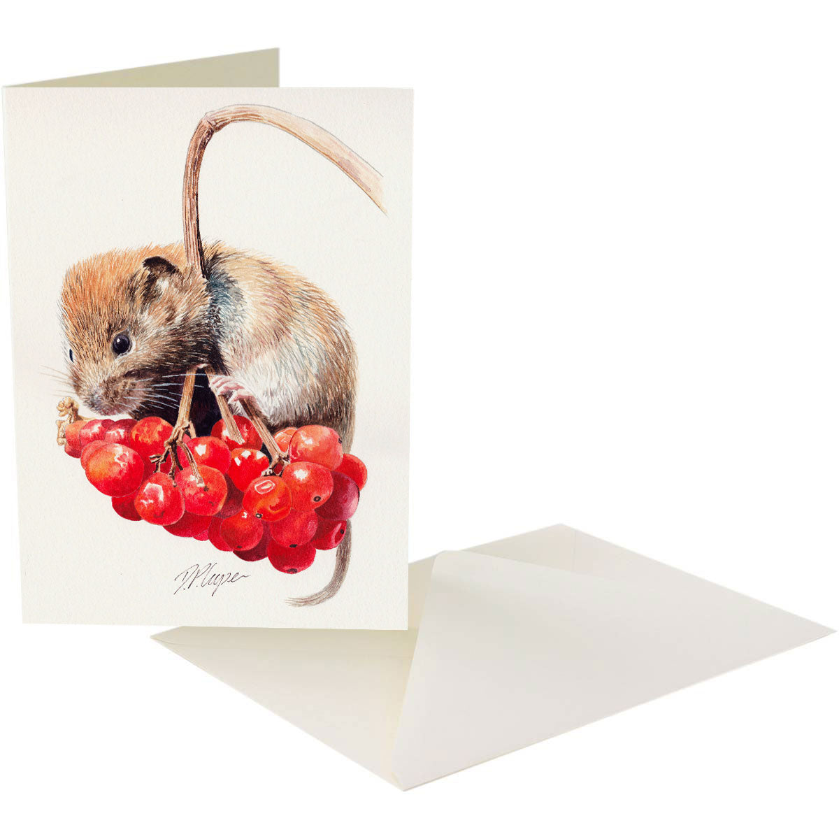 RED BERRIES - A5 Art card