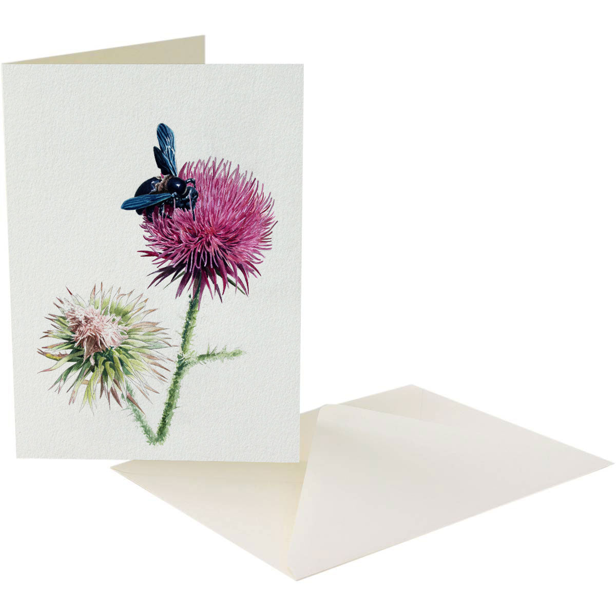 THISTLE - A5 Art card