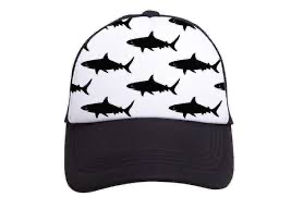 Tiny Truckers Sharks Hat