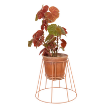 Afbeelding in Gallery-weergave laden, Cibele plant stand - dusty peach