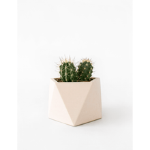 Afbeelding in Gallery-weergave laden, Mare planter large millennial pink