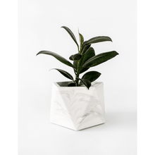 Afbeelding in Gallery-weergave laden, Mare planter large white marble