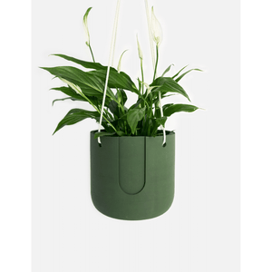 Nelson hanging planter