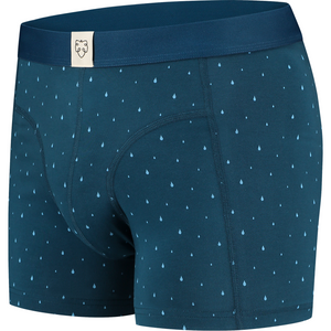 Regilio boxer brief