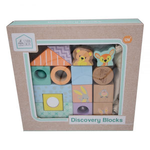 Discovery Blocks 15 pcs
