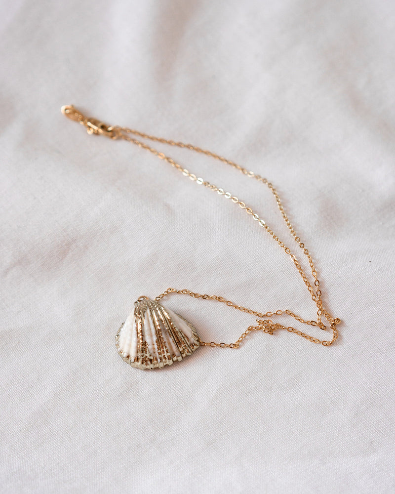 Galilea Shell Necklace