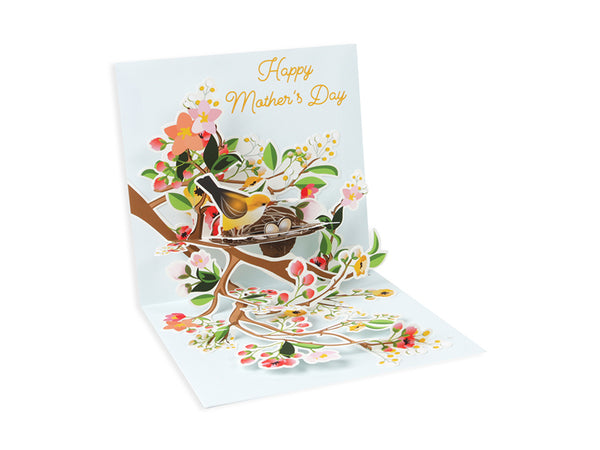 Birds of Spring Pop-up Greeting Card