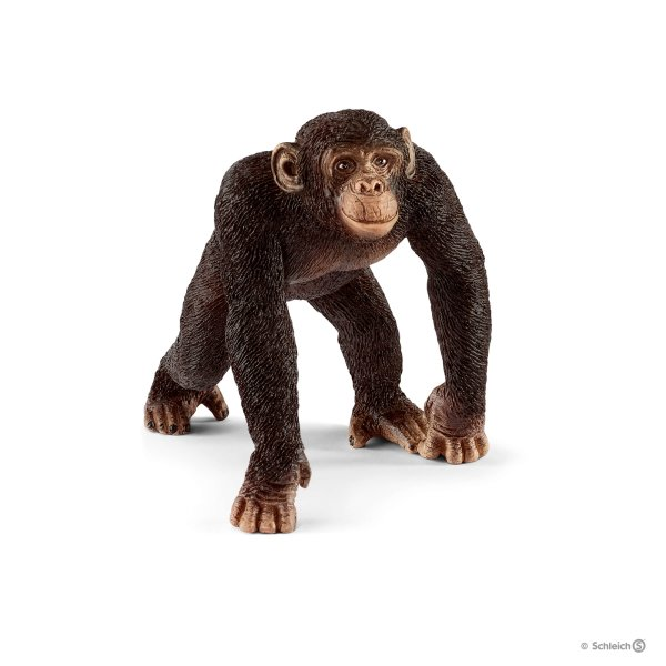 "Chimpanzee Male 3"" Figure"