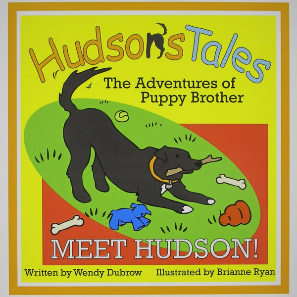 Hudson's Tales: The Adventures Of Puppy Brother