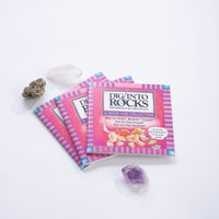 Dig Into Rocks Mini Book