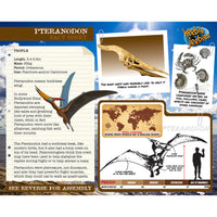Pteranodon 3D Wood Modeling Kit