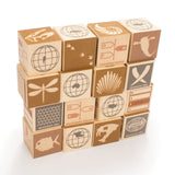 Fossil Wooden Blocks