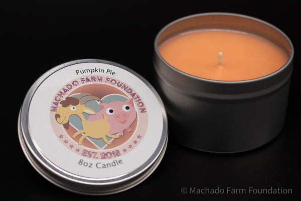 Pumpkin Pie Tin Candle