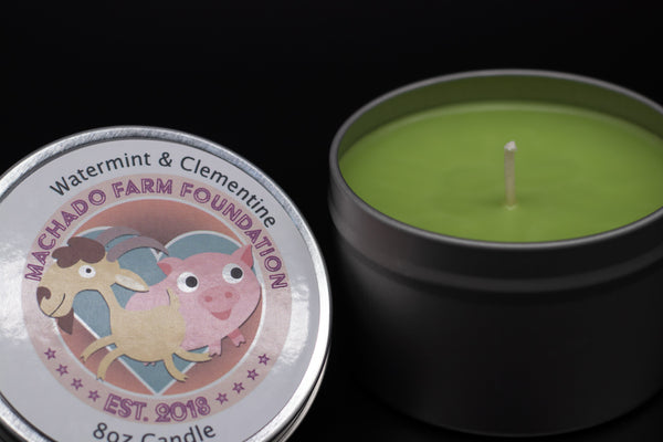 Watermint and Clementine Tin Candle