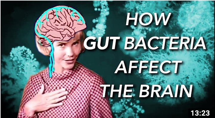 How Gut Bacteria Affect The Brain!