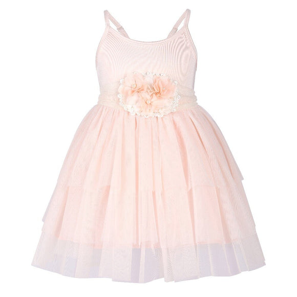 Soft Pink Tutu Dress with Sash
