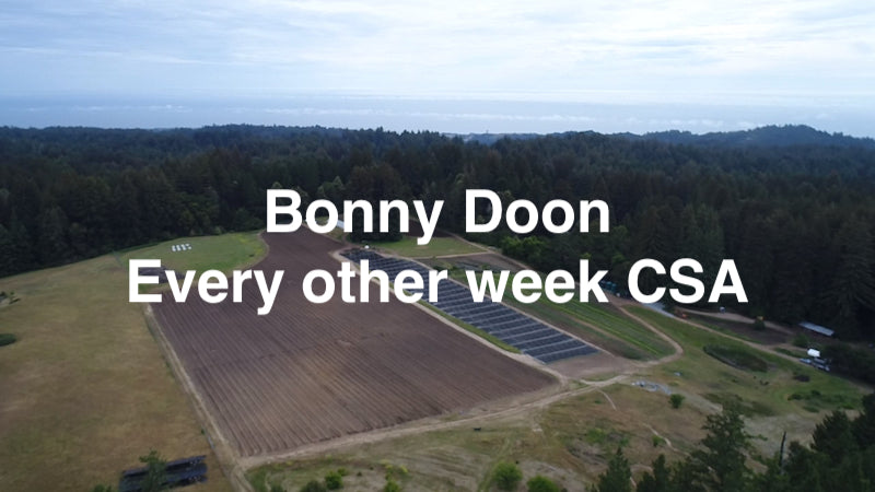 CSA 6 - BONNY DOON Every other week - Individual and Family Shares
