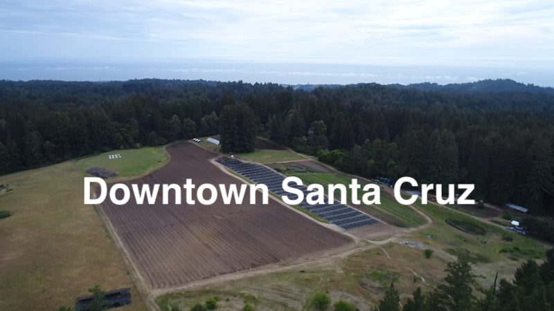 CSA 2 - Downtown Santa Cruz Individual and Family Shares