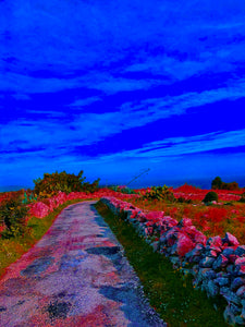 Seaview in pink and blue