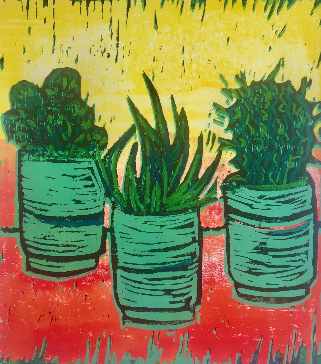 Cactus - potted plants III - yellow & red