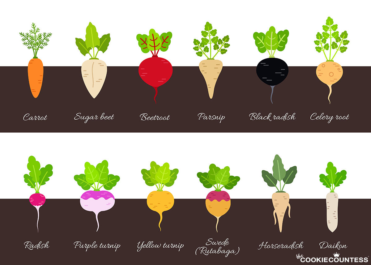 some common root vegetables