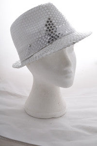 Sequin Covered Hat