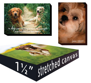 "Canvas Art - 12"" FRAMES"