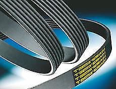 BMW V-Ribbed Belt
