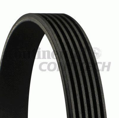Genuine Continental AUDI V-Ribbed Belt