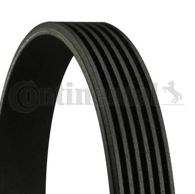 Genuine Continental Mercedes-Benz V-ribbed Belt