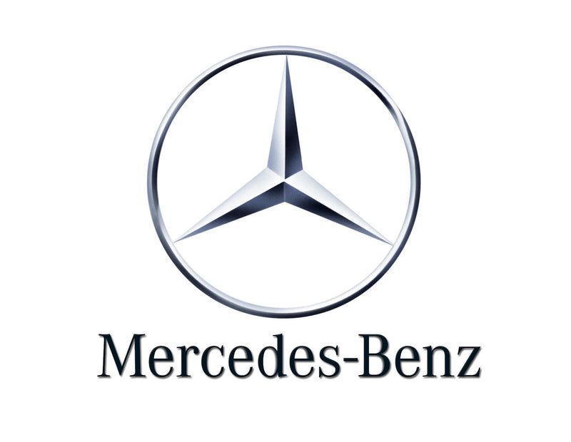 Genuine Mercedes-Benz Door Grab Interior Handle Front Left