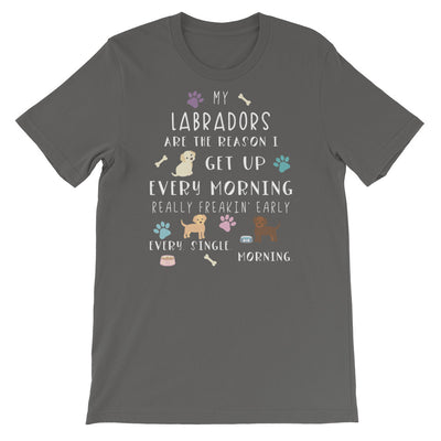 Funny Labrador Shirt, Women Men, Labrador Lover Gift, Cute Labrador Graphic Tee, Crazy Labrador Lady