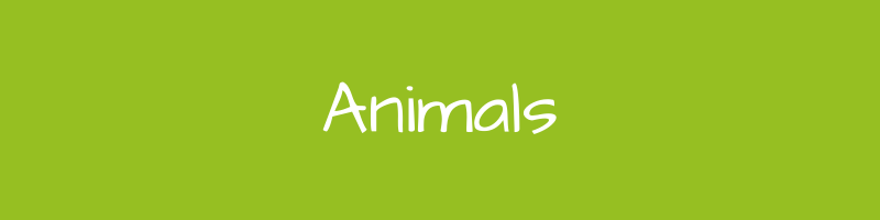 Buy Animals Themed Toys & Games Online - GiftWaley