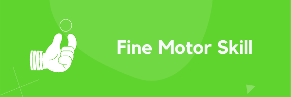 Fine Motor Skill based Educational Toys Online at GiftWaley