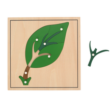 Load image into Gallery viewer, Buy HABA Botany Leaf Puzzle Montessori Material - GiftWaley.com