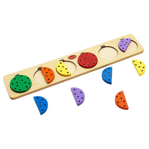 Buy Skola Coloured Beetles Wooden Toys - GiftWaley.com