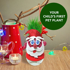 Toiing Plantoi Santa Claus - Pet Plant, That Grows Real Grass