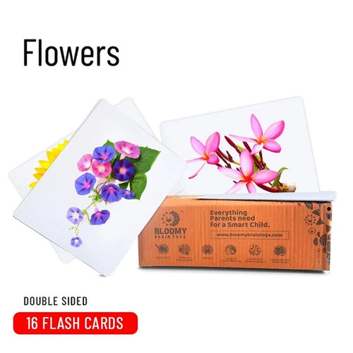 Buy Bloomy Brain Flowers Flash Cards - GiftWaley.com