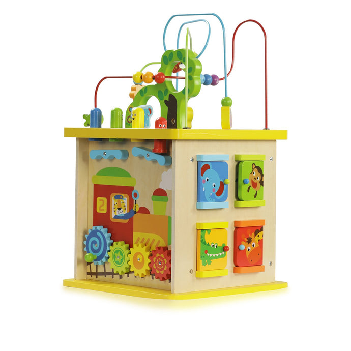Buy Bloomy Brain Multiple Intelligence Play Cube Wooden Toy - GiftWaley.com